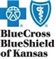 Dr. Igor Titov accepts Blue Cross Blue Shield of Kansas